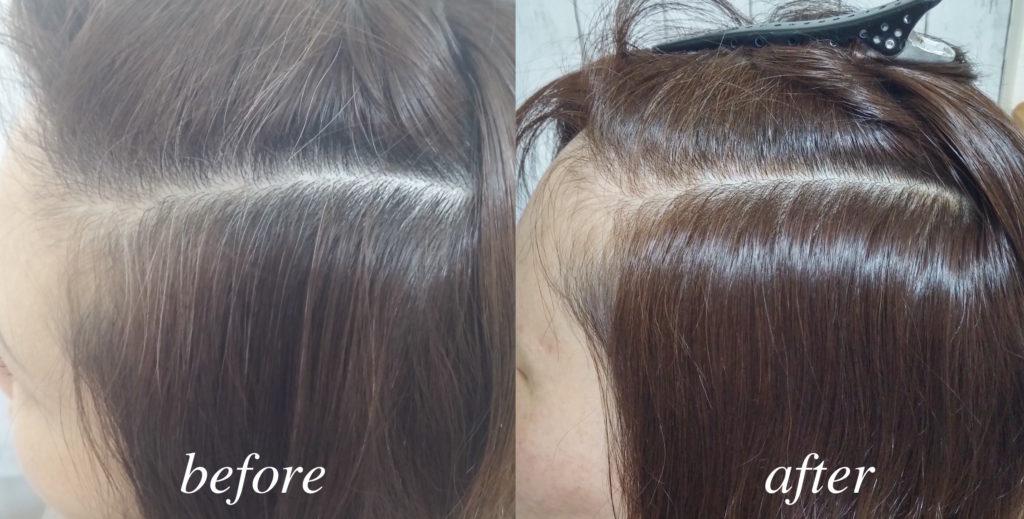 ノンジアミンカラーの白髪染めの施術例