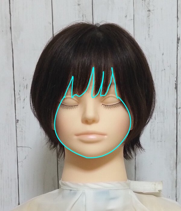 前髪と輪郭の見え方