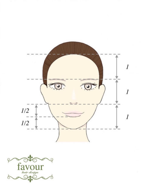 美人顔の黄金比 生え際から眉:眉から鼻下:鼻下から顎先が1:1:1 くちびるの下部が鼻下と顎先のちょうど中央に来る
