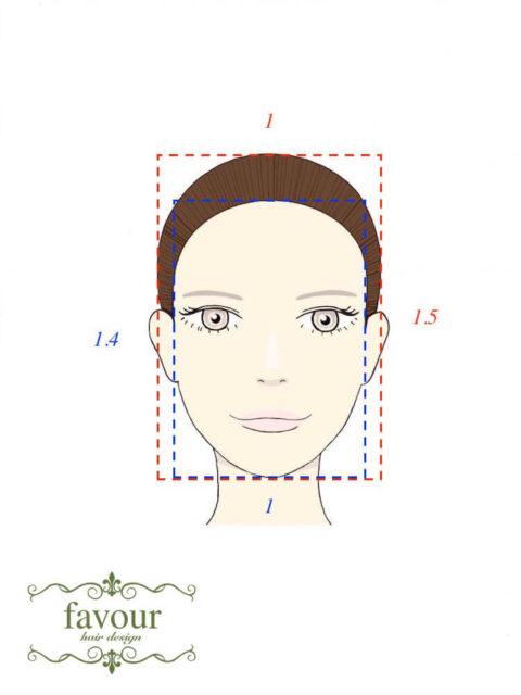 美人の黄金比 顔の幅と長さの理想的な関係
