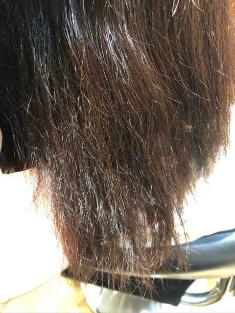 毛先がダメージの積み重ねでチリチリになってしまっている
